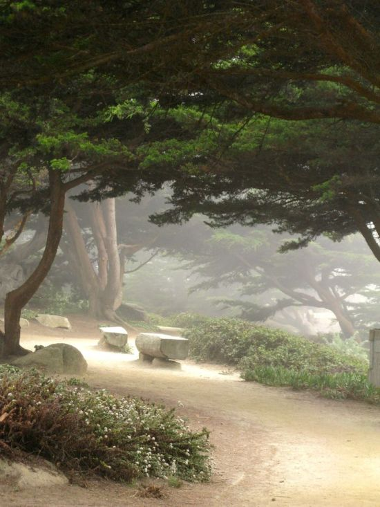 ~Carmel pathways by the sea~