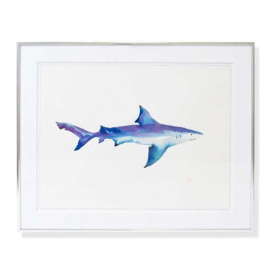 menocal_shark14