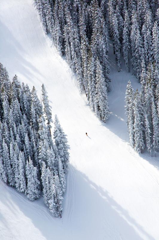 aspen-lone-skier[1]