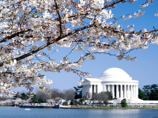 Jefferson_Memorial_Washington_DC