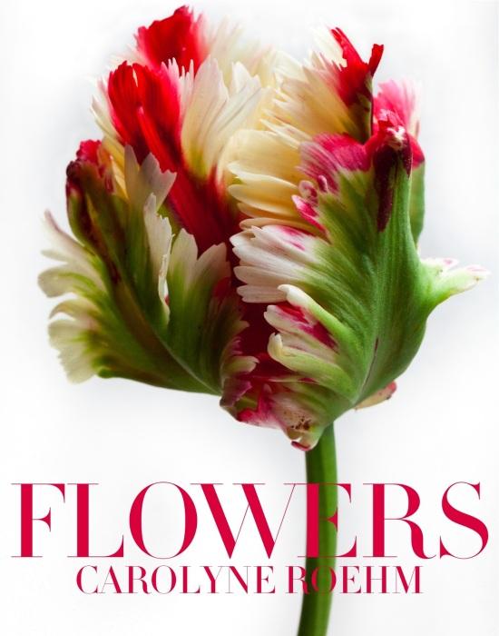 Flowers_jacket