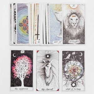 1430638-the-wild-unknown-deck-of-tarot-cards-b
