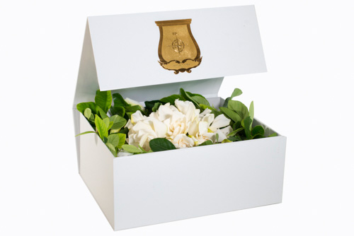 Vine-and-Bloom-gardenias-box